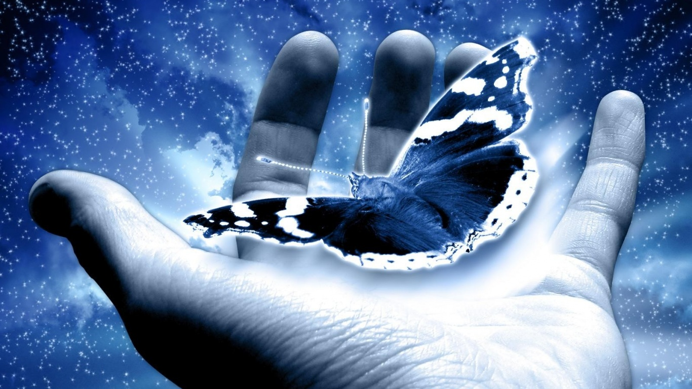 holding-a-butterfly-wallpapers_10255_1366x768